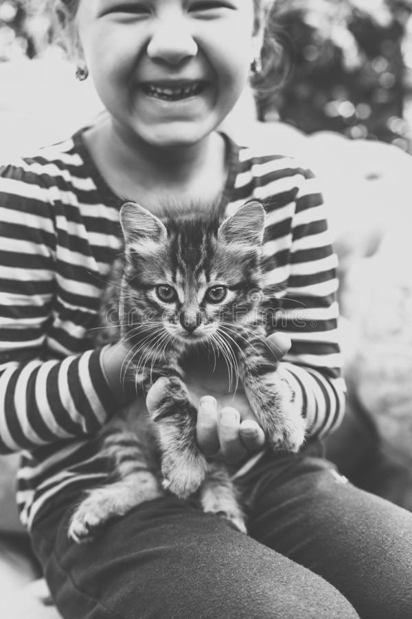 Cute little girl with kitten stock photos