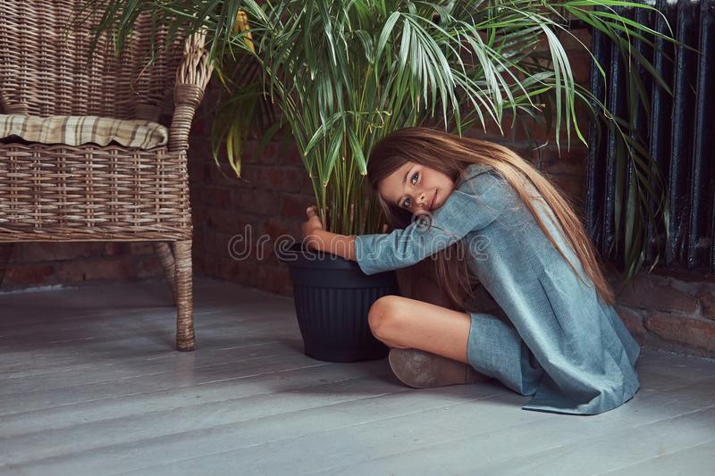 Cute little girl with long brown hair wearing a stylish dress, sitting on a wooden floor in a room with a loft interior royalty free stock images