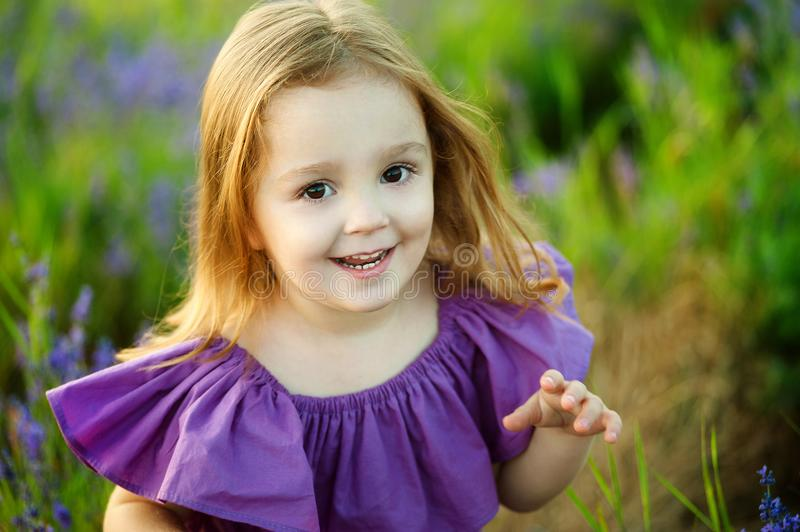 Cute little girl on the meadow in spring day stock image