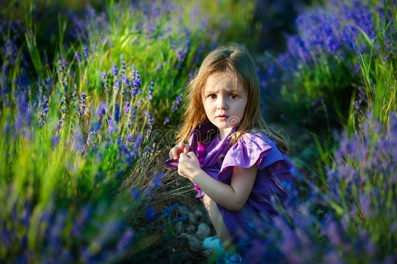 Cute little girl on the meadow in summer day stock images