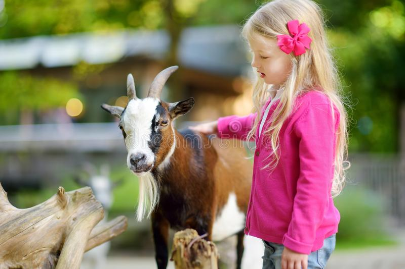 Cute little girl petting and feeding a goat at petting zoo. Child playing with a farm animal on sunny summer day. royalty free stock photo