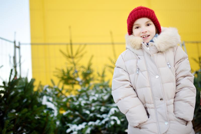 Cute little girl picking a tree at Christmas tree market on chilly winter day. Choosing Xmas tree for family celebration at home. stock photography