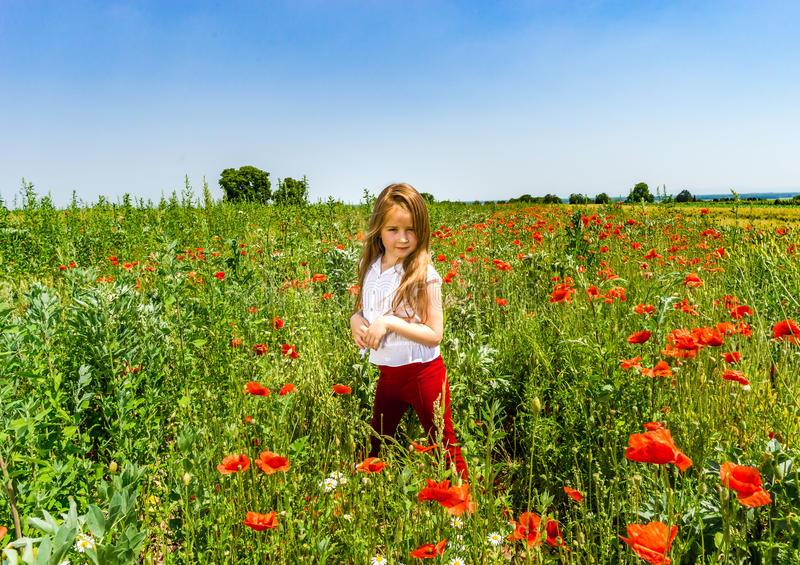 Cute little girl playing in red poppies field summer day, beauty royalty free stock photography