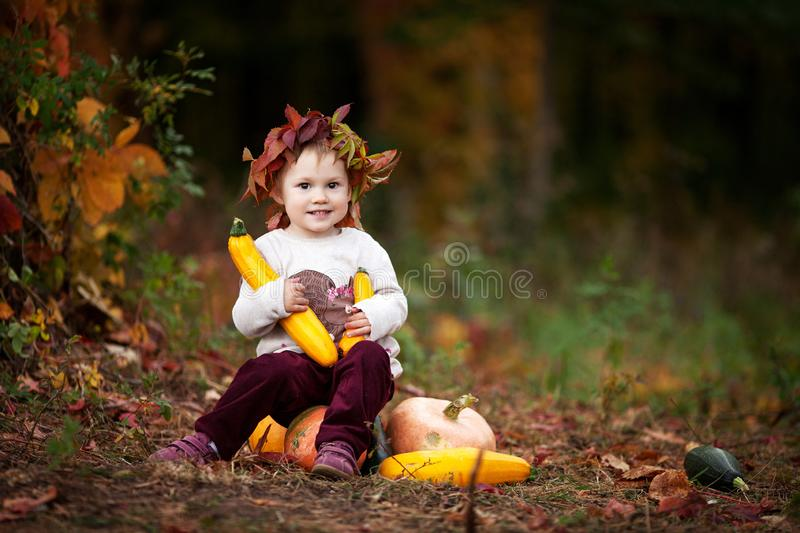 Cute little girl playing with vegetable marrow in autumn park. Autumn activities for children. Halloween and Thanksgiving time fun royalty free stock photography