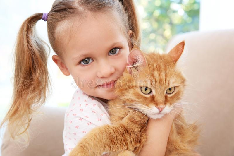 Cute little girl with red cat at home. Close up royalty free stock photo
