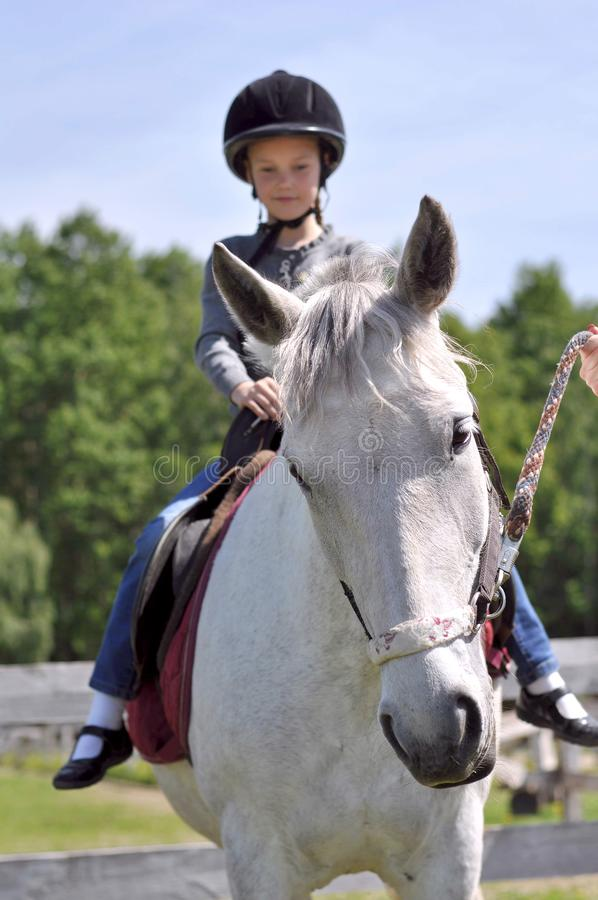 Cute little girl riding horse in the meadow royalty free stock images
