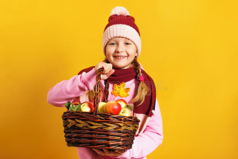 Cute little girl in a scarf and hat on a yellow background. A child holds a basket of apples. stock photos