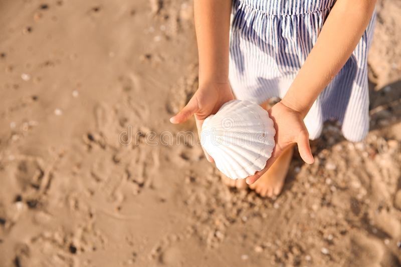 Cute little girl with sea shell on beach, closeup royalty free stock photos