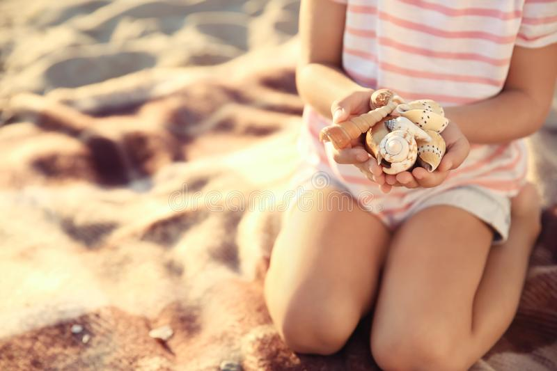 Cute little girl with sea shells on beach stock image