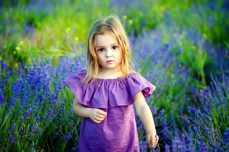 Little girl little girl in a pink dress looking hurt and sad look, in the summer on a flowering field background stock images