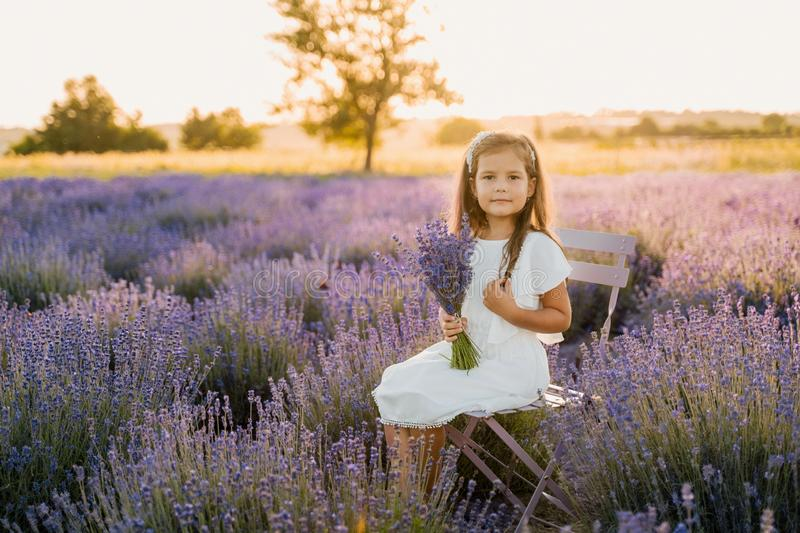 Cute Little Girl Sit on Colorful Lavender Field. Kid Model Holding Violet Flower Bouquet. Caucasian Young Beauty Posing on Chair Outdoor Looking at Camera royalty free stock images