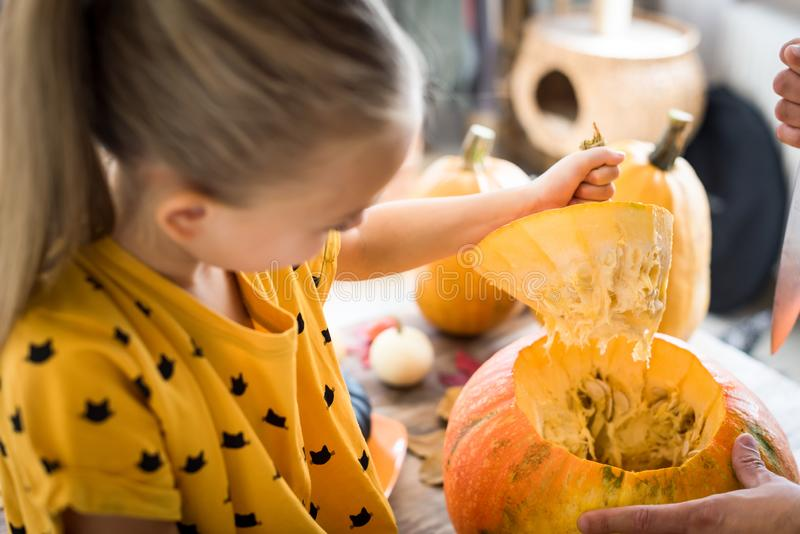 Cute little girl sitting on kitchen table, helping her father to carve large pumpkin, smiling. Halloween family lifestyle. royalty free stock image