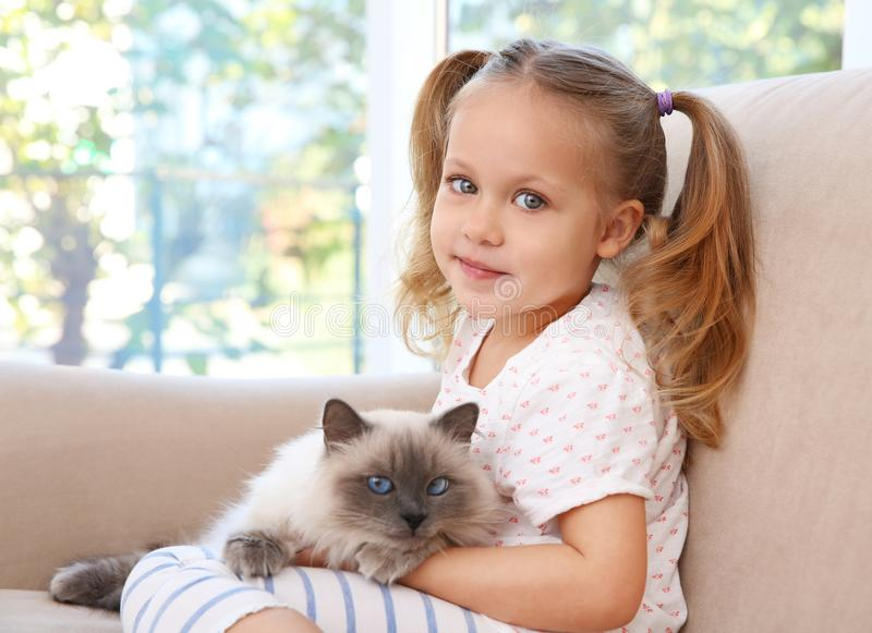 Cute little girl sitting on sofa with cat. Cute little girl sitting on sofa with fluffy cat royalty free stock images