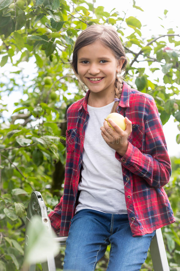 Cute little girl sitting on stepladder at garden and holding fresh apple royalty free stock images