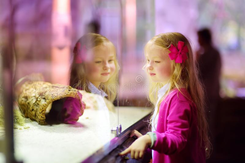 Cute little girl watching animals in the zoo. Child watching zoo animals through the window. Snakes in a terrarium royalty free stock images