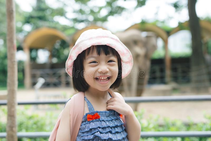 Cute little girl watching animals at the zoo on warm and sunny s royalty free stock photos