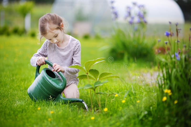 Cute little girl watering plants in garden stock photos