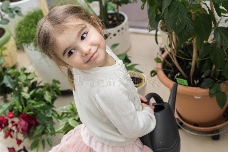 Cute little girl watering plants in her house royalty free stock photos