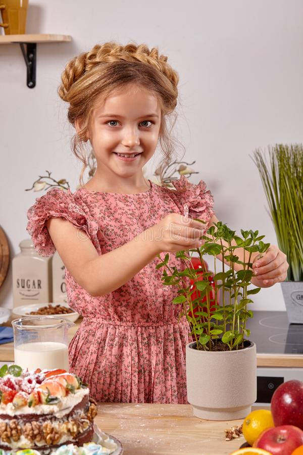 Little girl is making a homemade cake with an easy recipe at kitchen against a white wall with shelves on it. Cute little girl wearing in a pink dress is making stock image