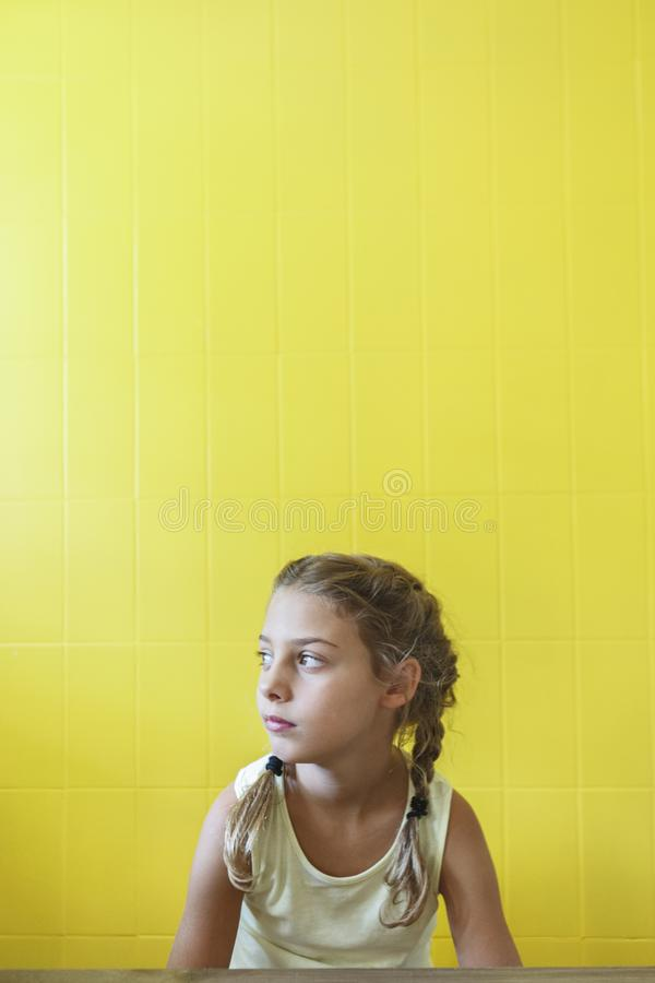 Free Cute Little Girl With Braids Stock Photography - 143754252