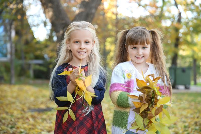Cute little girls with autumn leaves in park royalty free stock photos