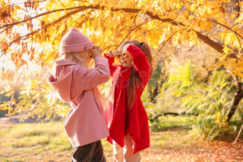 Cute little girls in autumn park royalty free stock image