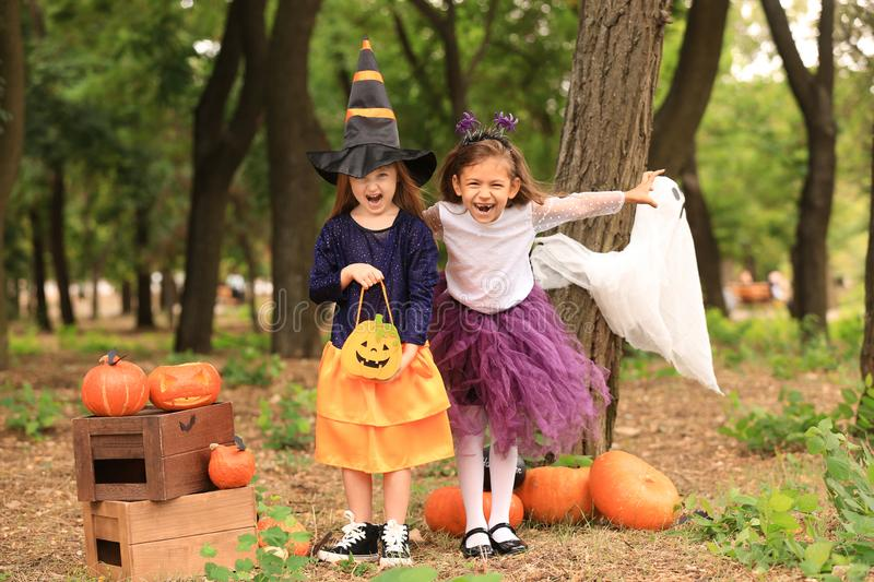 Cute little girls dressed for Halloween having fun in autumn park royalty free stock photography