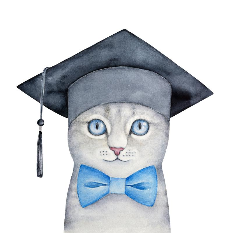 Cute little gray kitten with beautiful blue eyes wearing black square academic hat and classic bow tie. Education, science symbol. Hand drawn watercolour vector illustration