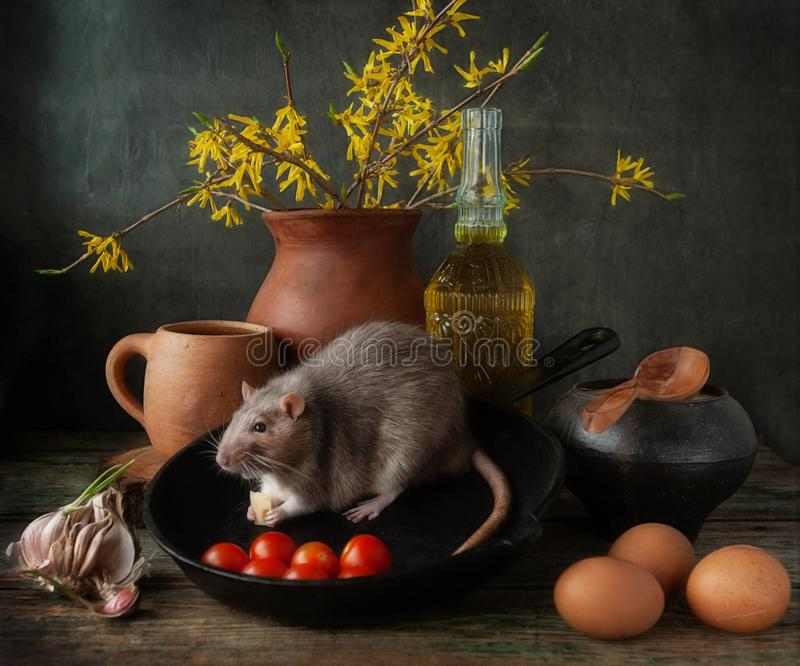 Cute little gray rat eating cheese in cast iron pan with tomatoes and eggs. Still life composition in vintage style. Chinese New. Year symbol stock photo
