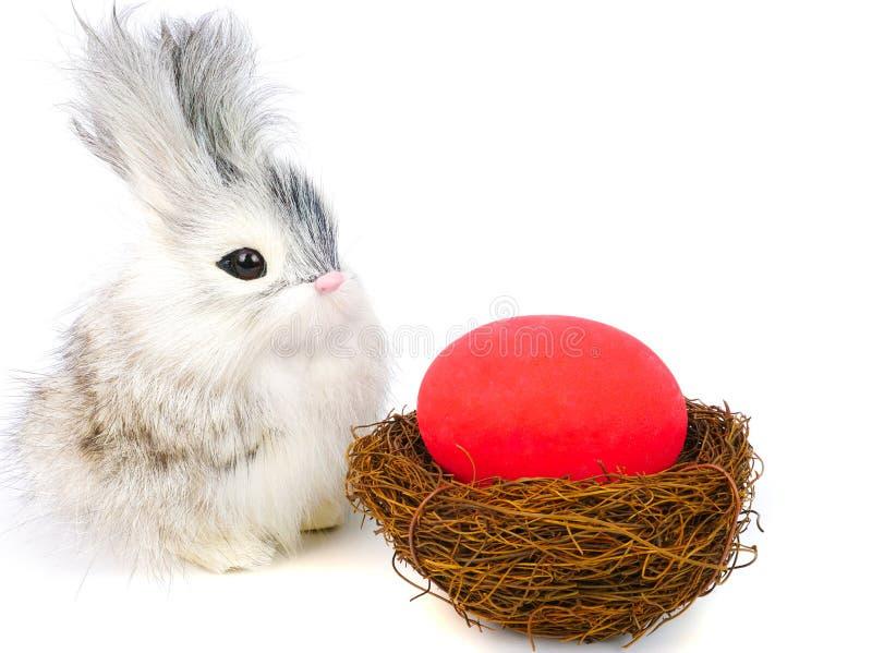 little rabbit and ester eggs stock photos