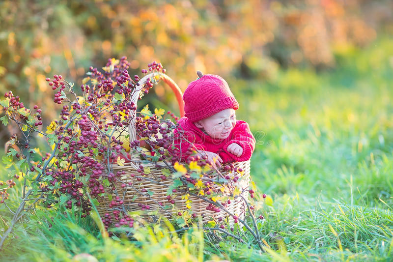 Download Cute Little Newborn Baby In Basket With Red Berries Stock Photo - Image: 41527692