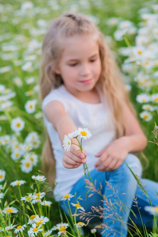 Cute little smiling girl in the chamomile field stock image