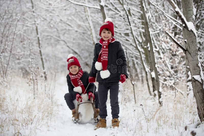 Cute little toddler boy and his older brothers, playing outdoors with snow on a winter day stock photography