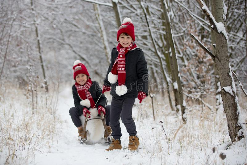 Cute little toddler boy and his older brothers, playing outdoors with snow on a winter day royalty free stock image