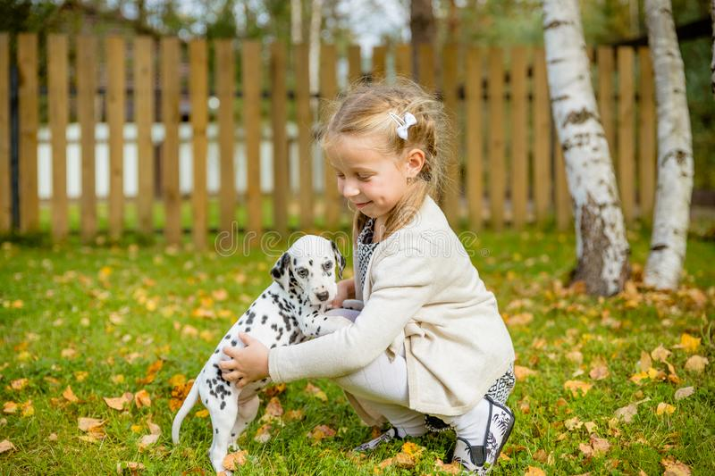 A cute little toddler girl giving a hug to her dog,Dalmatian puppy, fall season in a garden,lawn with autumn leaves in. A cute little toddler girl giving a hug stock photography