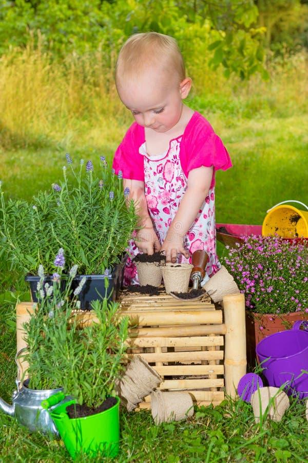 Cute little toddler having fun gardening stock photos