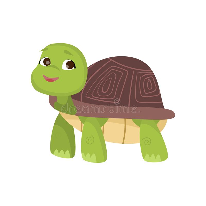 Cute little turtle stands on four paws looking up and smiling isolated on white background vector illustration