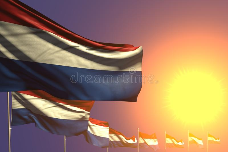 Cute many Netherlands flags placed diagonal on sunset with space for text - any celebration flag 3d illustration. Nice anthem day flag 3d illustration royalty free illustration