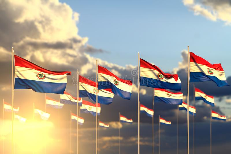 Pretty celebration flag 3d illustration - many Paraguay flags on sunset placed in row with selective focus and space for your. Cute many Paraguay flags on sunset royalty free illustration