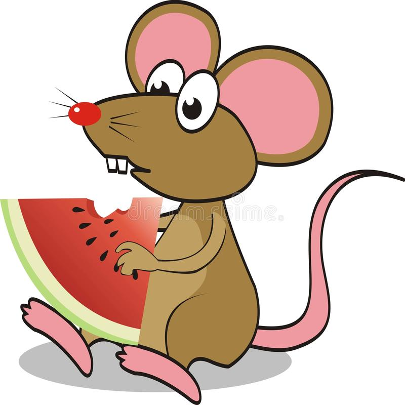 Cute mouse eating watermelon. vector illustration stock illustration