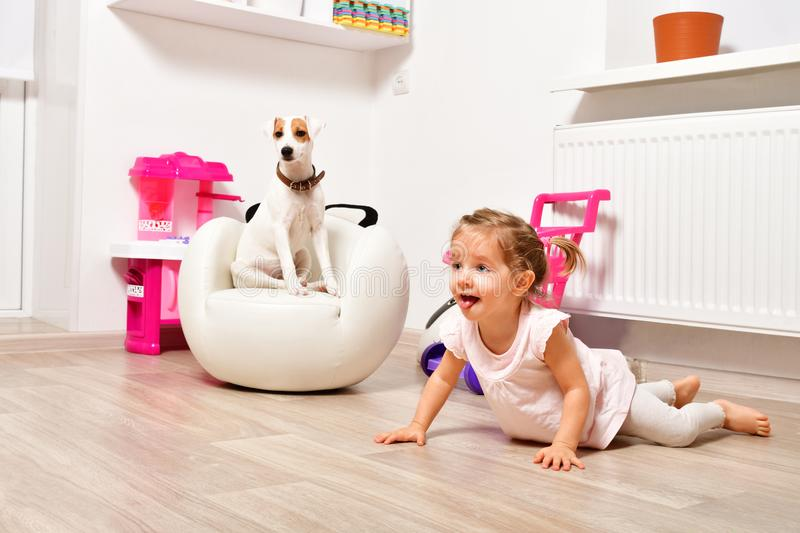Cute naughty girl and a young dog breed Parson Russell Terrier stock image