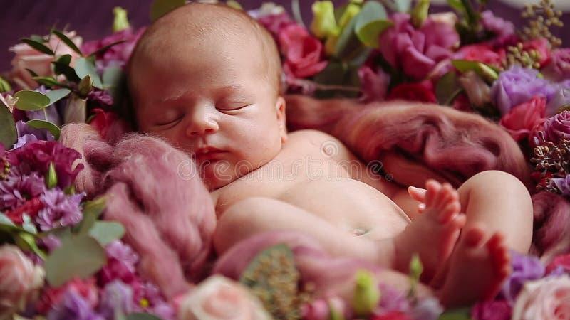Cute newborn baby girl sleeping in flowers stock video video of female bedroom 65628439