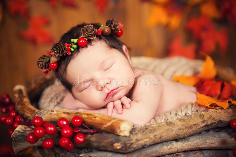 Cute newborn baby in a wreath of cones and berries in a basket with autumn leaves royalty free stock photo