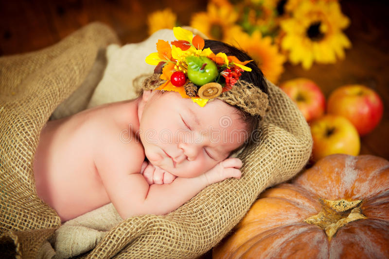 A cute newborn in a wreath of berries and fruits sleeps in a basket. Autumn harvest. stock image
