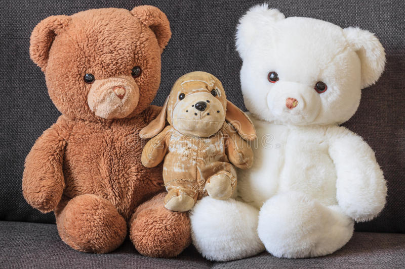 Cute old teddy bears and dog on couch. (three stock image