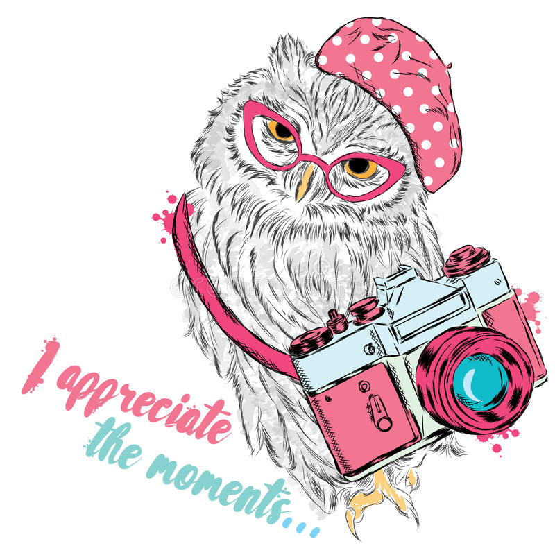 Cute owl with a camera. Owl vector. Postcard with an owl. Hipster. stock illustration