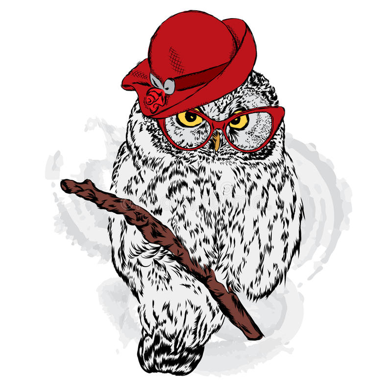 Cute owl wearing a hat and sunglasses. Vector illustration for greeting card, poster, or print on a postcard vector illustration