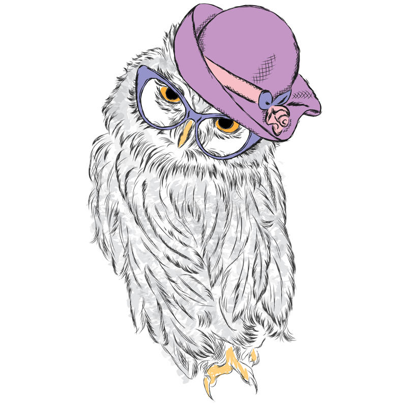 Cute owl wearing a hat and sunglasses. Vector illustration for greeting card, poster, or print on a postcard stock illustration