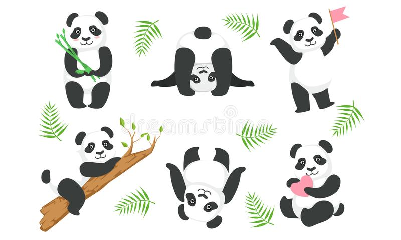 Cute Pandas Zeichensatz, Adorable Animals in verschiedenen Situationen, schönes chinesisches Symbol Mascot Vector Illustration lizenzfreie abbildung