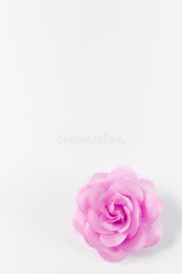 Cute paper rose stock image